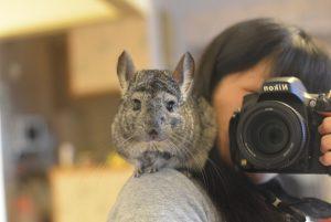 ペット撮影カメラマン